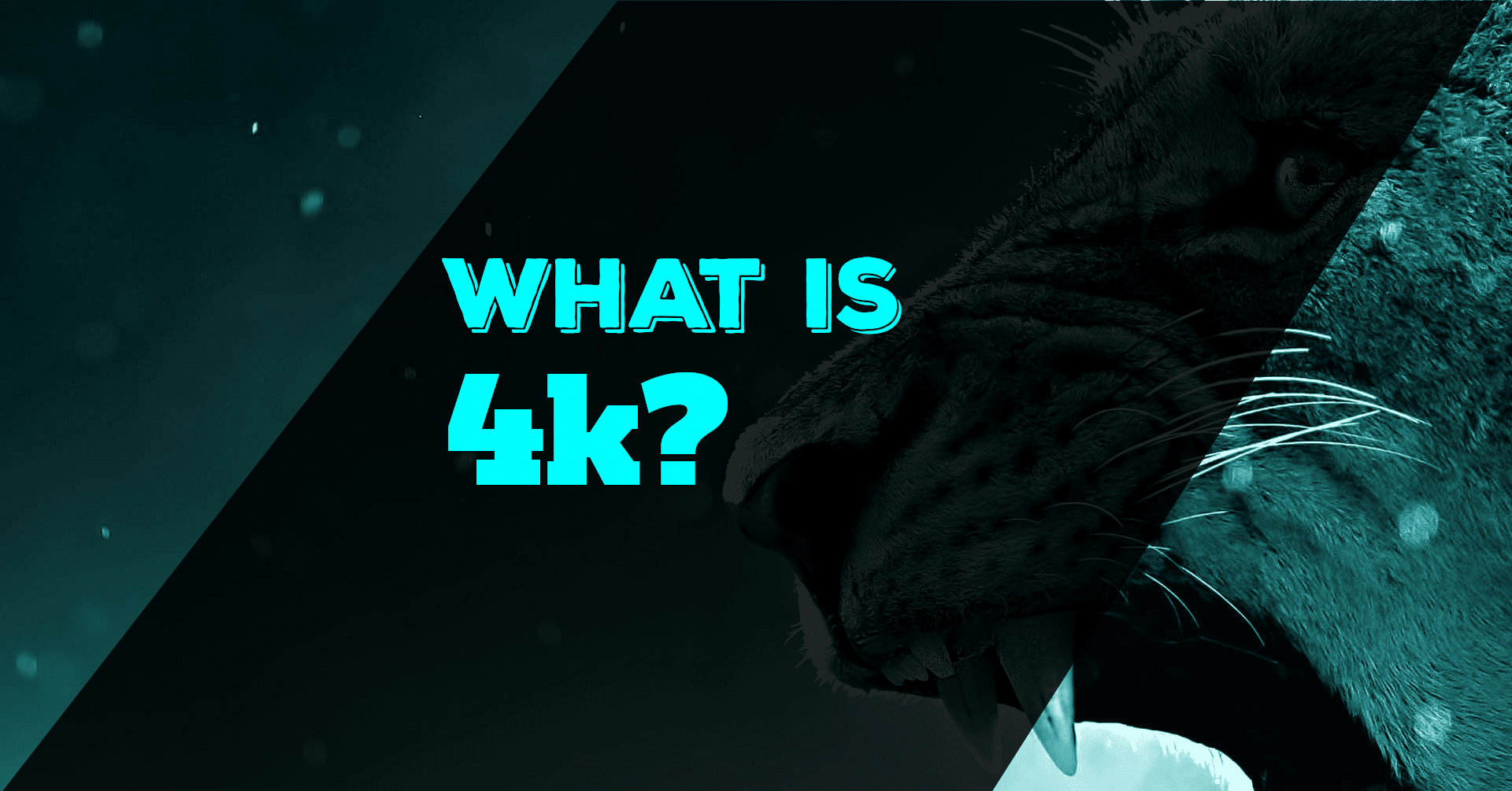 What Is 4k Video?